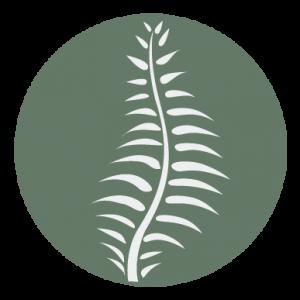 Brackenhurst logo